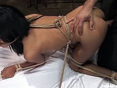 Cassandra Cruz gets tormented and furiously fucked in BDSM scene