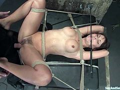 This is a BDSM video about a heavy pounding! Sizzling and horny siren Maria Bellucci is going to be tied up and drilled hard!