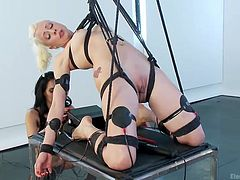 Blonde mistress Lee was a very bad girl and punished a lot of cunts but this time it's her turn to be punished. Miss Love is about to take care of that as she tied the blonde in a very uncomfortable position and then began taunting her with an electric wand and a vibrator. Surely she has a lot more for her blonde