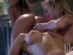 These goddess babes Lauryl Canyon,Nina Hartley and Serenity are loves to be fucked hard in assholes and they used big toys to get full satisfaction.