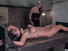Curvaceous Nika Noire gets whipped and toyed by Harmony
