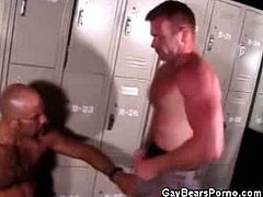 Watch horny bear cops Alberto Casanova and Dakota Philips in their hot cock sucking action in the locker room.Both of these bear cops strips off their uniform and gets busy by sucking each other big cocks.