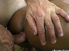 Brazilian Tranny Ariadina Oliver goes erotic as her lover fondles her. Her tits gets touched then her lover gives him a tender blowjob. They engage in hardcore bareback sex which Ariadina lso banges her lovers tight ass. Later on they both cum off together.
