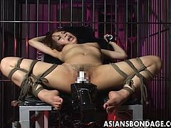 This is a really rough sex bondage movie .Watch her tied up, immobilized and fucked with a machine. See her scream and squirm around trying to break free from the specialized chair used for bondage sex. I cant imagine how she can take the pain and pleasure at the same time. from the look of her actions, the penetrations and of her dripping pussy is intense. If you love watching a beautiful asian woman pleasured against her will, this is the movie for you.