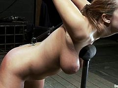 Brunette chick with huge boobs gets bonded and then spanked painfully. After that her Master shoves a hook in Trina's ass and and pulls her hair.