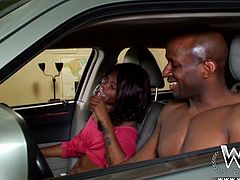 Saucy ebony babe with big booty and pretty face Toni Marie teases her lover Prince with her bubble butt. Black bitch gives head sucking that big black cock and then gets her drooling coochie fucked in missionary and doggy positions.