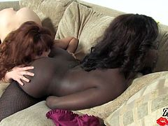 These sexy lesbians are horny and naughty. They are using all kind of toys to satisfies each other and get strong orgasm.