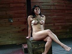 Insolent brunette with superb tits gets nailed in a staggering bondage porn show