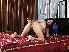 Brunette Annika Amour with small breasts fucking anally like it aint no thing