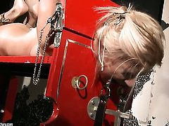 Blonde Mandy Bright is ready to spend hours licking Nikky Thornes wet hole non-stop