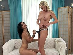 Two horny lesbian bitches fuckin' each other with a strap-on dildo in this hot-ass lesbian sex scene right here. Hit play and enjoy it, bitch!