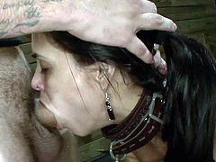 Bound brunette girl with sexy ponytail fucks in the mouth and from behind.