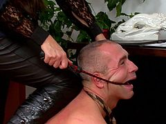 Nothing pleases her more than seeing her guy obeying her nasty needs