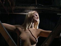 Watch this beautiful blonde, Cherry Kiss, as she is restrained and dominated. Bondage, whipping, spanking, sucking.. this BDSM video has it all!