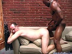 Hot and nasty bald dude likes when his ass in fucked hard by massive black cock and he is willing to do anything for that kind of pleasure.