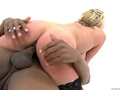 Check out this hot interracial video where the busty blonde Alanah Rae is fucked by a brother's big black cock as she wears stockings.