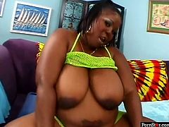 Plump ebony bitch Sabrina Love gets rid of her yellow fishnets before rubbing her soaking wet black snatch. Thick black hoe spreads her legs and lets her stud dig her wet cunt with his tongue.