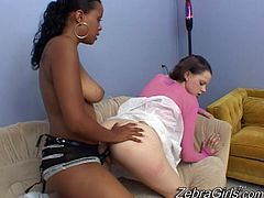 This hot ebony with fucking her white girlfriend with big black strap on. She pleasured her by nailing hard her sexy asshole.