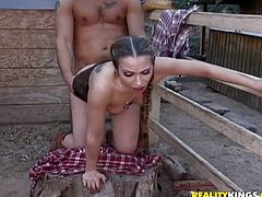 Jamie Elle gives a blowjob to her cowboy and gets a pussy licked. Then Jamie gets her hairy pussy fucked on a tree stump.