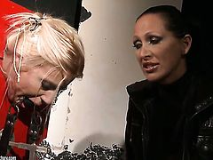 Blonde Mandy Bright cant keep her lips off Nikky Thornes hole