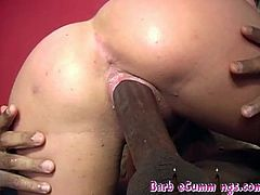 Horny Barbie Cummings is ready to get hammered by two big dicked dudes from the hood. One sticks his black mamba deep into her mouth, while her pussy is stretched wide.