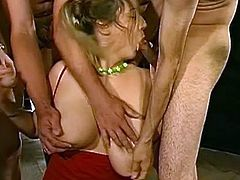 These hotties love to pose nasty during dirty gang bang porn shows