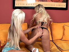 Press play on this hot lesbian scene where these two sexy blondes make your dick hard as they please each other on the couch.