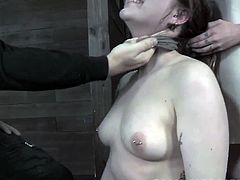 Mollie rose and candace cross hot bondage.