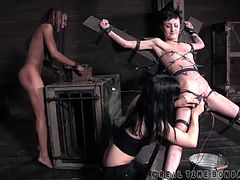 This is the third installment of our play time with Cadence Cross. In case you don't remember her, she is the petite, tattooed, little minx with the deep and abiding love of bondage, discipline, and rough sex. She never passes on an opportunity to tell us how much she can take, how unafraid she is, and how much she is looking for more. Every member watching this feed had a few ideas on how to push her limits. We did our best to put them into action.Cadence is bent nearly in two. You can see the wear and tear from the day in the bruises all across her ass. Her cheeks have turned bright pink fro