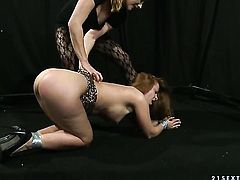 Mature Alice King and Katy Parker are lesbian love birds that do it with desire