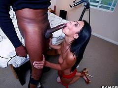 Nothing compares with a Hispanic pussy! Cassandra is one and boy is she radiating with sexuality! The dark haired milf knows exactly what she wants and in this case, it's a huge black cock. Cassandra wants it all in so she undresses, kneels and sucks that black meat. After that she spreads her legs and gets stuffed!