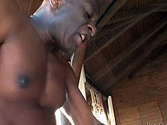 Hot blooded black freak hardcore pounds two eye catching dark haired sluts with gorgeous buttons. One of them gets powerfully anal attacked, the other one sucked his wet BBC deep throat after that...Look at this harsh interracial FFM fuck in Fame Digital sex clip!