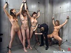 four dirty hoes get tortured