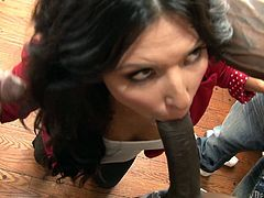Make sure you have a look at this hardcore interracial scene where the slutty Danica Dillon is gangbanged by black monster cocks until her mouth's filed by cum.
