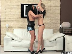 Ally and Victoria Blaze warm up by licking each other and then they masturbate with dildos looking at each other.