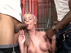 Make sure you check out this interracial scene where the slutty blonde Kaylee Hilton is double penetrated by two black monster cocks in a threesome.