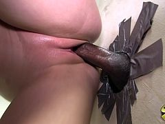 Delightful Holly Michaels Sucks A Big Black Cock Ardently