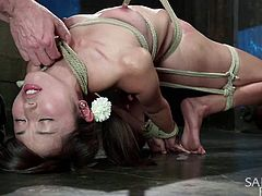Cute little Asian bitch Marica is in very big trouble! She ended up here at Sadistic Rope, not knowing how rough things can get around here. Well, too late for regrets, because our executor is working on her now. He tied her hard, used a weight to make it hard to breath and... well, you see the rest of it!