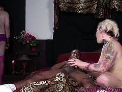 A nice White girl in pink lingerie has a wild sex with a Black guy