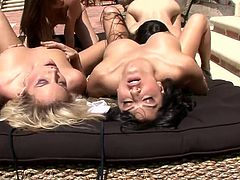 Entertain yourself by watching these babes, with big boobs and shaved kitties, while they lick and touch each other ardently outdoors.