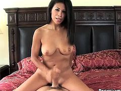 Skilled bitch Cassandra Cruz making nice handjob and takes