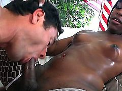Ebony shemale is relaxing with white dude. They are sucking big cocks of each other one by one both moaning and coiling from enjoyment before having wild anal fucking.