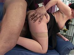 Impossibly tasty looking bombshell with big ballrooms and amazing button posed doggy style and got her ever thirsting slit banged hard by big black dick. Enjoy this torrid wench in Fame Digital sex video!