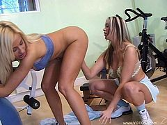 Prepare your cock for these lesbian blondes, with giant boobs wearing sportive clothes, while they piss and lick each other with passion.