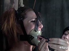Cici Rhodes has been in the dungeon, but she has never been dominated by another female. Watch her spreading legs wide to experience hardcore pussy drilling.