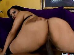 Jazmine Cashmere is the complete package. She has huge tits and a magnificently sculpted ass. Curvaceous beauty knows how to please her lover. She gets down on her knees and gives him the best blowjob of his life.