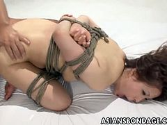 Doggy fucking tied Japanese slave. Her legs are tied up and unable to move, and she screams in agony and pleasure at the same time. Her pussy is continually fucked harder.