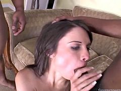 Long haired small tits bitch rests on floor and passionately waits for hardcore mouth fuck. Bunch of crazy studs set to desperately poking her dirty eating hole. Watch this harsh orgy mouth fuck in Fame Digital porn video!