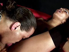 Hot Gold's babe, Aline, with one large dick pounding her cramped twat