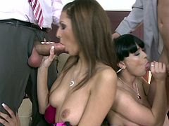 Young beauties are at their first adventure in raw foursome action